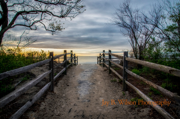 A Walk to the Beach