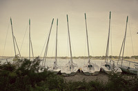 sailboats at tod's point, greenwich, ct